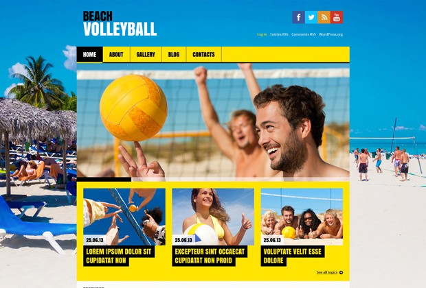 Wordpress Theme Volleyball