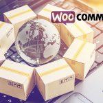 WooCommerce installieren und einrichten