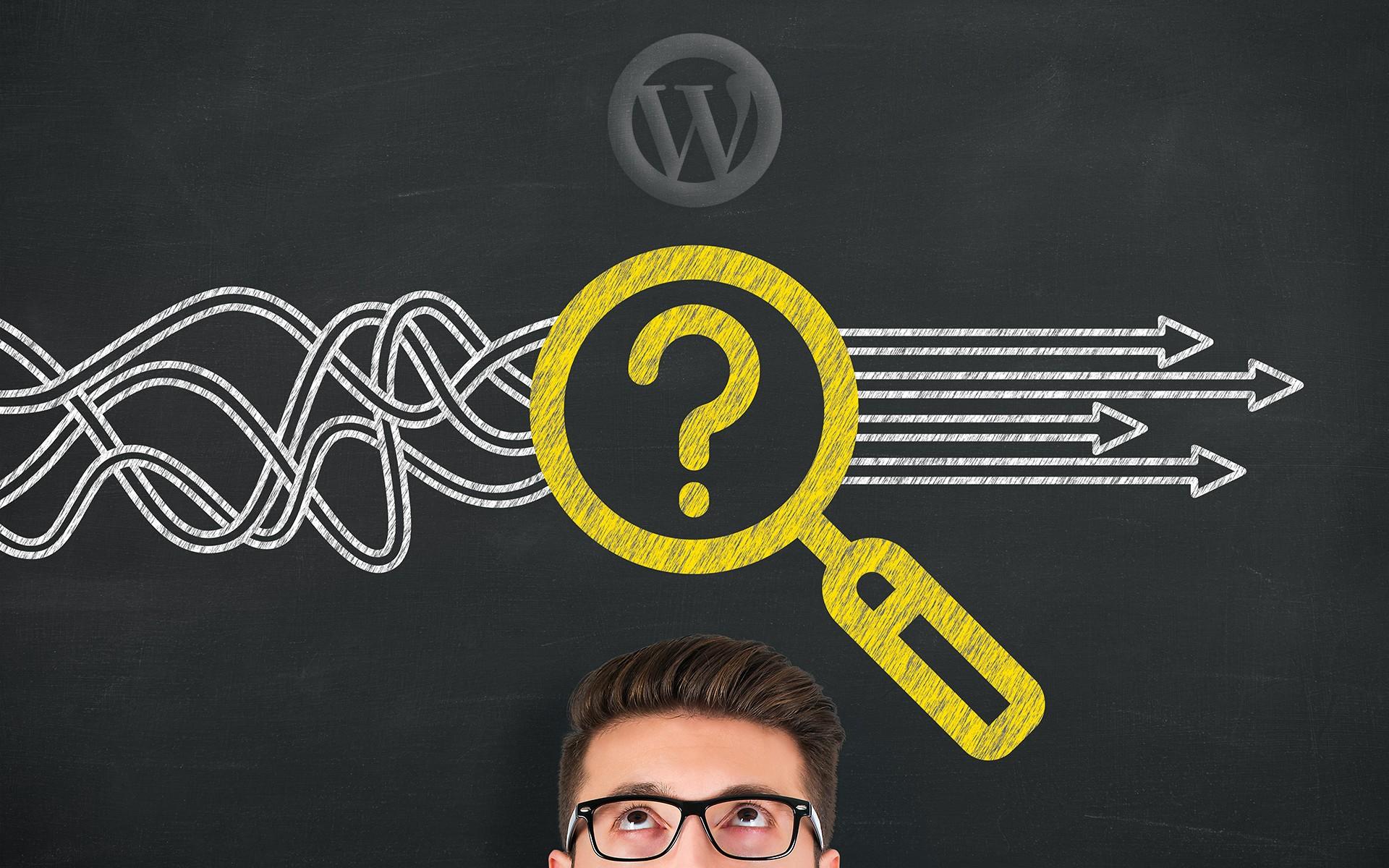 Wordpress Suchfunktion verbessern