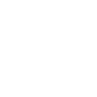 Mehrsprachenverwaltung für Wordpress