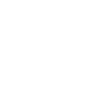 Absicherung und Security-Maßnahmen für Wordpress